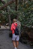 Mamífero animal engraçado pequeno África do lêmure com povos Fotografia de Stock Royalty Free