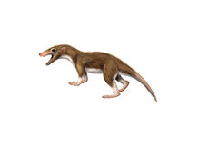 Mamífero antiguo Megazostrodon ilustración del vector