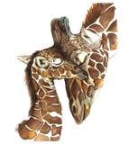 Mamíferos animais da imagem da aquarela que vivem em girafas de África, mãe e criança, girafa fêmea e filhote, retrato o ilustração stock