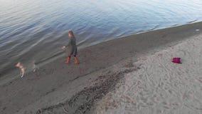 Mam? e hija, funcionamiento, juego con un perro marr?n Labrador en la playa por el r?o Pel?cula a?rea almacen de video