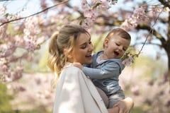 Mam? joven de la madre que detiene a su peque?o ni?o del muchacho del hijo del beb? debajo de los ?rboles florecientes de SAKURA  imagenes de archivo