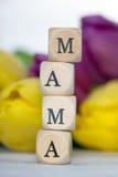 mama Стоковые Изображения RF