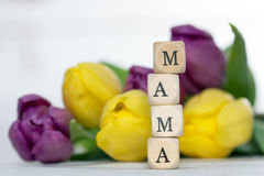 mama Fotografia Stock