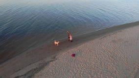 Mama i c?rka, bieg, sztuka z br?zu psa labradorem na pla?y rzek? Powietrzna ekranizacja zbiory wideo