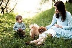 Mama i dziecko bawić się z psim obsiadaniem na trawie fotografia royalty free