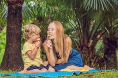 Mama i syn pinkin w parku Je zdrowe owoc mango, ananas i melon -, Dzieci jedzą zdrowego jedzenie obraz royalty free