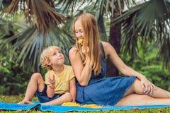 Mama i syn pinkin w parku Je zdrowe owoc mango, ananas i melon -, Dzieci jedzą zdrowego jedzenie obraz stock