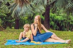 Mama i syn pinkin w parku Je zdrowe owoc mango, ananas i melon -, Dzieci jedzą zdrowego jedzenie fotografia royalty free