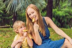 Mama i syn pinkin w parku Je zdrowe owoc mango, ananas i melon -, Dzieci jedzą zdrowego jedzenie obrazy royalty free