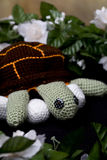 Mama Turtle with eggs. Crocheted mother turtle with eggs royalty free stock image