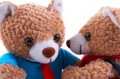 Mama-u. Vati-Teddybären Stockfoto