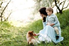 Mama z dziecka i psa Pomorskim spitz jest odpoczynkowa na zielonej trawie obrazy royalty free