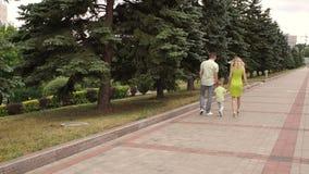 Mama z tata i mały syn chodzimy w parku w lecie swobodny ruch zbiory wideo