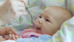 Mama zieht mit einem Löffel ihr nettes neugeborenes Babypüree der Zucchininahaufnahme ein stock video