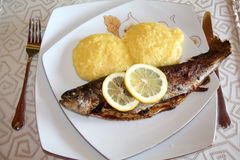 Mamaliga and whole grilled fish with lemon slices Royalty Free Stock Images