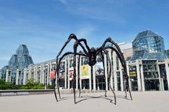 Maman蜘蛛和加拿大,渥太华的国家肖像馆 库存照片