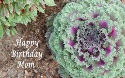 Maman de joyeux anniversaire Photographie stock