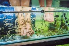 Maman et fils ? la station thermale de poissons photo libre de droits