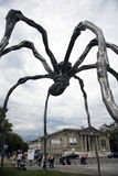Maman in Geneva Royalty Free Stock Image