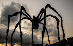Maman Rising Royalty Free Stock Photography