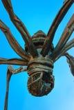 Maman - uma escultura da aranha em Roppongi Hills no Tóquio Foto de Stock