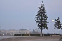 Mamayev Kurgan - complejo conmemorativo Fotos de archivo libres de regalías