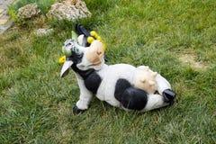 Mamelle menteuse de partie supérieure de vache à jouet Photographie stock libre de droits