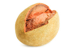 Mamey fruit. A tropical  fruit called mamey Royalty Free Stock Photography