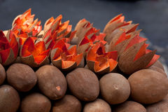 Free Mamey In Market Stock Photo - 25632440