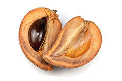 Mamey Sapote Stock Photos