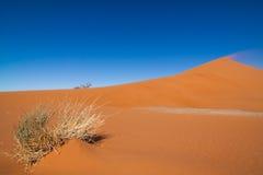 Mamib sand dune Stock Photo