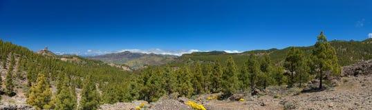 Mamie Canaria, Las Cumbres Photo libre de droits