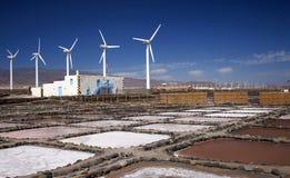 Mamie Canaria, Salinas de Tenefe Image stock