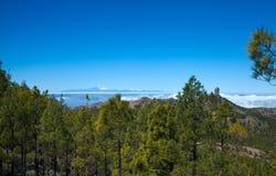 Mamie Canaria, visibilité directe Cumbres - les régions les plus élevées de l'île Images stock