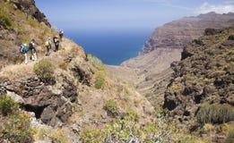 Mamie occidentale Canaria, mai Photos stock