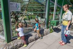 Mamma con i bambini nello zoo Immagine Stock Libera da Diritti