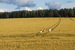 Mamma della famiglia e due bambini ragazza e ragazzo che camminano i giacimenti e le foreste di grano Fotografie Stock Libere da Diritti