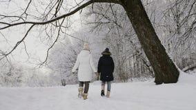 Mamma en dochter die in aard in de winter lopen stock video