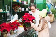 Mamma met kind het kopen bloem Stock Foto's