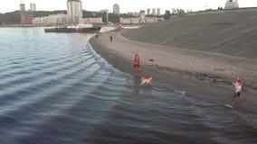 Mamma och dotter, k?rning, lek med en brun hund labrador p? stranden vid floden Flyg- filmande stock video