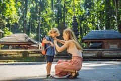 Mamma- och sonhandelsresande som upptäcker den Ubud skogen i apaskogen, Bali Indonesien Resa med barnbegrepp royaltyfria foton