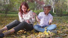 Mamma- och sonlek i hösten parkerar De kastar gula sidor Lycklig utomhus- tidsfördriv stock video