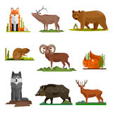 Mammal animals vector set in flat style design. Zoo cartoon icons collection. Royalty Free Stock Image