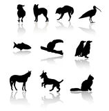 Mammals. Mixed sihlouettes of domesticated and ild animals Stock Photography