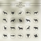 Set of mammals icons Stock Images