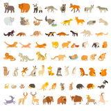 Mammals of the world. Extra big animals set. Vector illustration Royalty Free Stock Photo