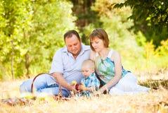 Mamman, farsan och sonen har en picknick royaltyfria bilder