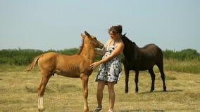 Mamman och behandla som ett barn med hästar på fältet arkivfilmer