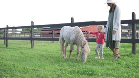 Mamman och hennes lilla dotter går runt om lantgården med en ponny stock video