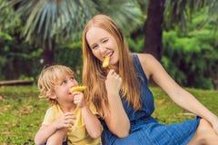 Mamman och sonen hade en picknick i parkera Äta sunda frukter - mango Royaltyfri Bild